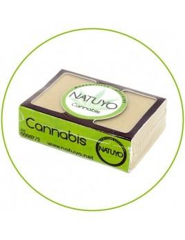 Mascarilla de jabón NATUYO de Cannabis